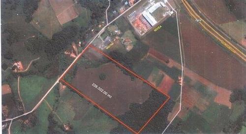 Área À Venda Em Macuco - Ar241199