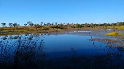 Fazenda Em Formoso Do Araguaia - To P/ Pecuária - 535