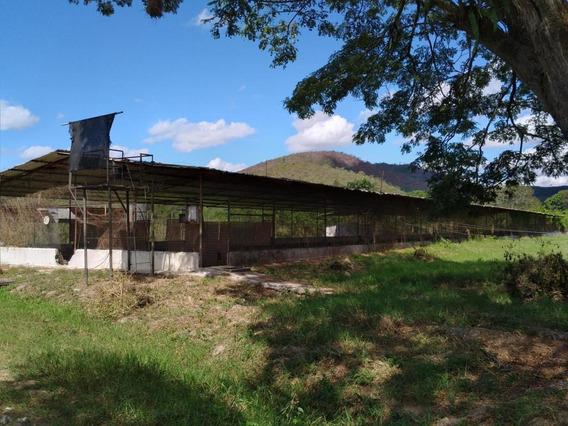 Finca Avicola En Venta, En Urb Montalban, 21-844 Ajc