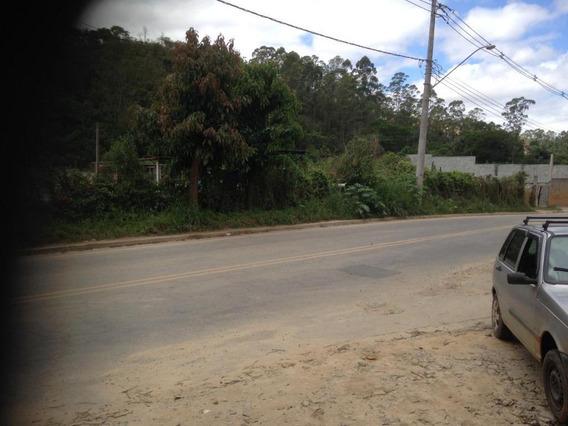 Terreno À Venda, 6000 M² Por R$ 600.000,00 - Chácara Descansolândia - Ferraz De Vasconcelos/sp - Te0822