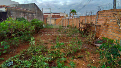 Terreno, Vila Monte Alegre, Ribeirão Preto - R$ 135.000,00, Codigo: 56078 - V56078