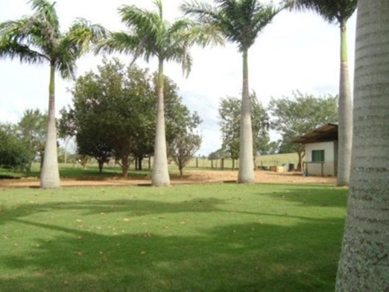 Sítio Rural À Venda, Centro, Itapetininga. - Si0011