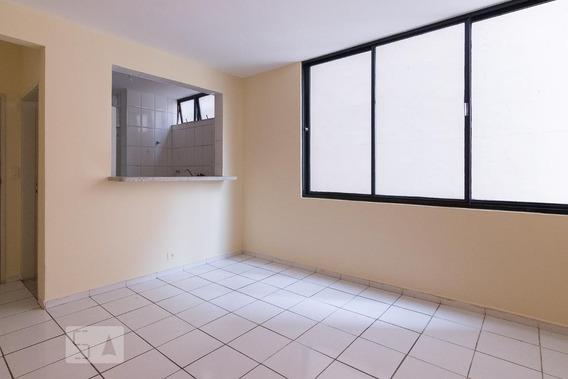 Apartamento Para Aluguel - Barra Funda, 1 Quarto, 55 - 893017552