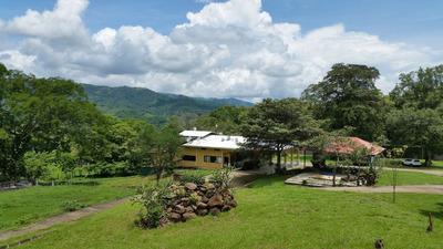 Propiedad Con Excelente Ubicación En Turrúcares De Alajuela