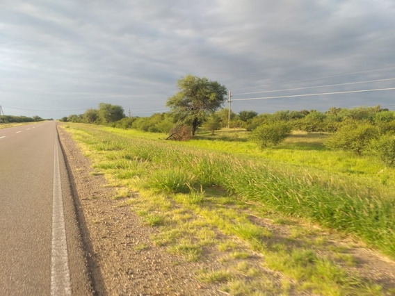 Excelente Oportunidad Para Inversores - Campo En La Rioja