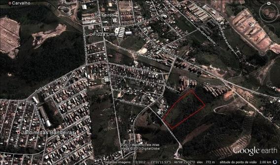 Área Para Projeto Minha Casa Minha Vida 24.000,00 Metros Quadrados - 225