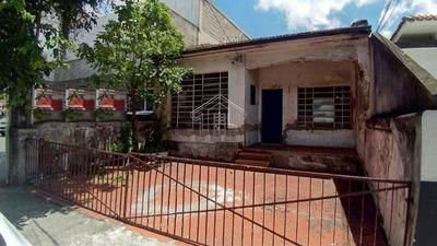 Terreno Para Venda / Locação No Bairro Jardim, 169 M² - 10484gigantte