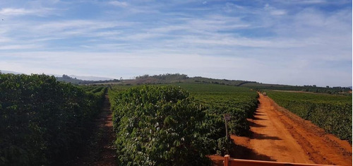 Fazenda A Venda No Sul De Minas - Bcp111