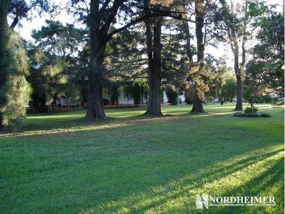 80 Ha En Abbott, Partido De Ca?uelas, Provincia De Buenos Aires -ideal Haras, Rrpp, Casco -campo En Venta