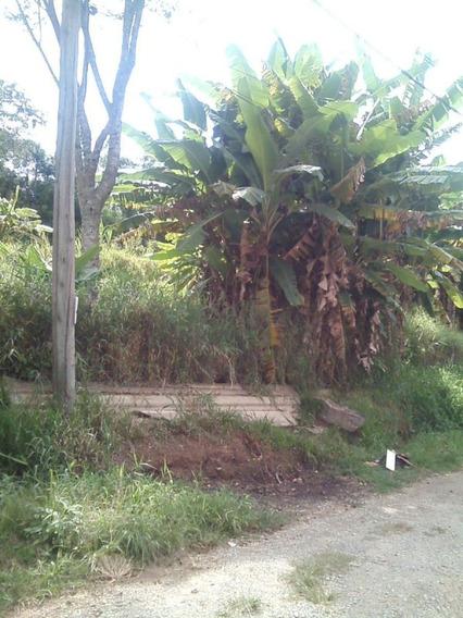 Terreno Para Venda No Vila Moraes Em Mogi Das Cruzes - Sp - 1497