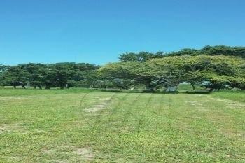 Terrenos En Venta En Bustos Pemex, Tampico Alto