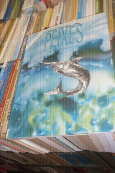 Peixes Da Costa Brasileira 3ª Ed,1999 De Alfredo C. Filho #