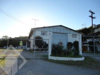 Terreno - Nova Sardenha - Ref: 106940 - V-106940