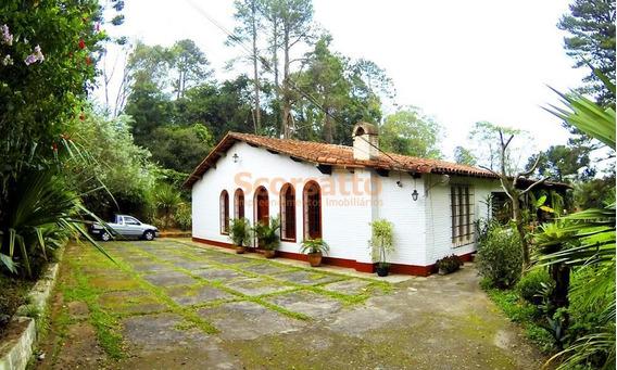 Chácara Residencial Para Venda E Locação, Jardim Nisalves, Itapecerica Da Serra. - Ch0073