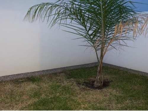 Casa Sola En Renta Fraccionamiento El Refugio