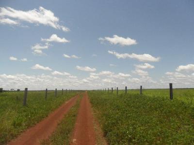 Fazenda Em Formoso Do Araguaia - To, Dupla Aptidão - 193