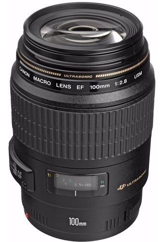 Lente Canon 100mm Macro Ef Usm F/2.8 Gar. Brasil 12x S/juros