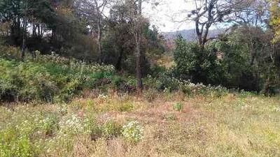 Terreno Poca Pendiente En Palo Azul, San Juan Tlacotenco, Tepoztlán, Morelos.