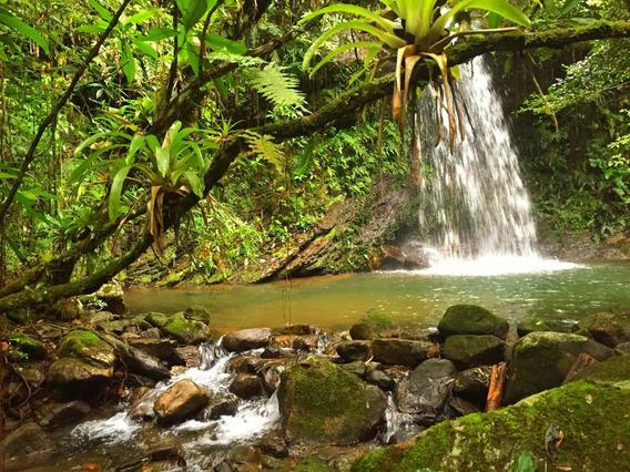 Chácara Sítios Fazendas C/ 4 Cachoeiras Nascentes