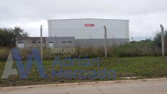 Galpon 1000 M2 En Parque Industrial Ezeiza
