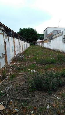 Terreno Comercial. Centro Da Cidade 557 Metros. - Te1440