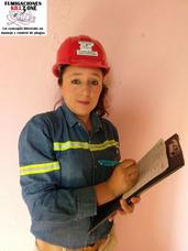 Servicios De Fumigacion Y Control De Plagas