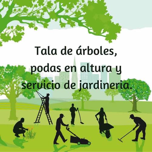 Poda Y Tala De Árboles Canelones, Parque Del Plata