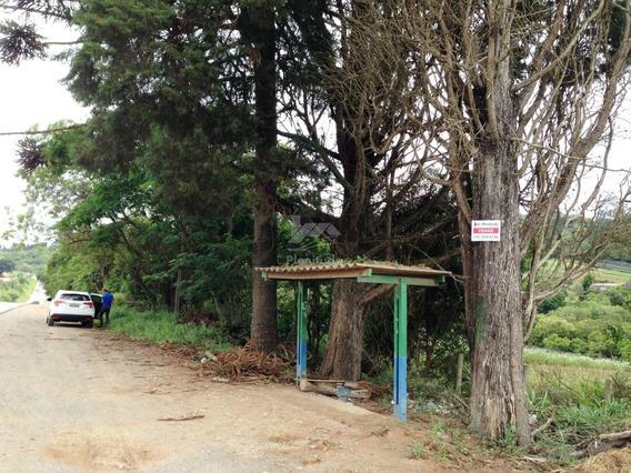 Terreno Frente Para Rodovia Bunjiro Nakao !!! Cod 530