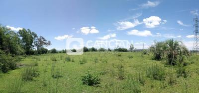 Rural - Tomazetti, Santa Maria / Rio Grande Do Sul - 55786