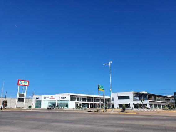Local Totalmente Nuevo En Renta Plaza 450 18.60m2