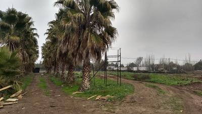 35 Hectareas Frente Carretera Ruta G150 - Lampa