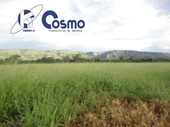 Fazenda, A Venda, Em Alvorada Do Norte - Go - Fa00055 - 33385174