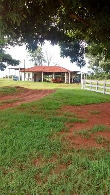 Fazenda A Venda Em Nova Andradina - Ms (pecuária) - 773