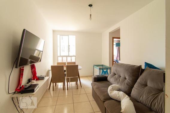 Apartamento Para Aluguel - Castelo, 2 Quartos, 52 - 893006605