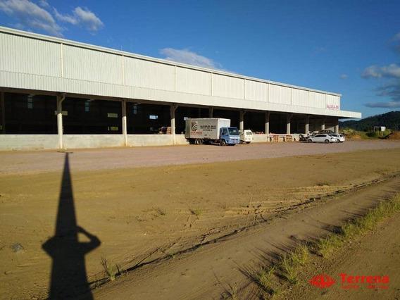 Galpão Industrial/comercial Para Alugar (br 470) - Belchior Baixo - Gaspar/sc - Ga0150