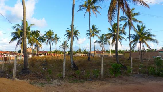 Lotes Na Praia De Maragogi Al -para Casa De Praia Ou Pousada
