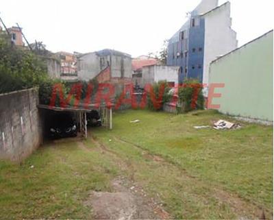 Terreno Em Vila Mazzei - São Paulo, Sp - 324103
