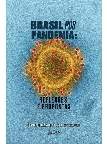 Imagem 1 de 1 de Brasil Pós Pandemia: Reflexões E Propostas