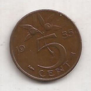 Holanda Moneda De 5 Cents Año 1955 !!