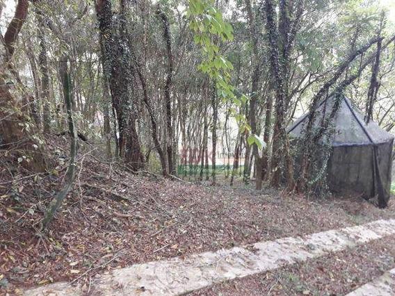Terreno À Venda, 2000 M² Por R$ 265.000 - Zona Rural - Santo Antônio Do Pinhal/sp - Te1405