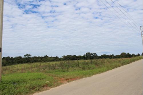 Área À Venda Com 32000m² Por R$ 3.200.000,00 No Bairro Estados - Fazenda Rio Grande / Pr - Te0187