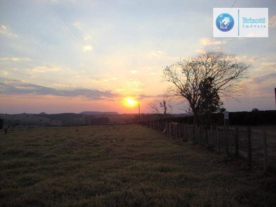 Sítio Rural À Venda, Zona Rural, São Tomás De Aquino. - Si0034