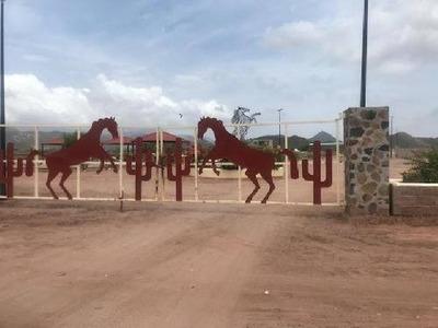 Terreno Habitacional En Venta En San Carlos Plaza, Guaymas, Sonora