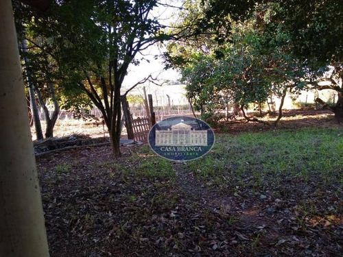 Chácara Com 3 Dormitórios À Venda, 21000 M² Por R$ 450.000,00 - Rosele - Araçatuba/sp - Ch0058