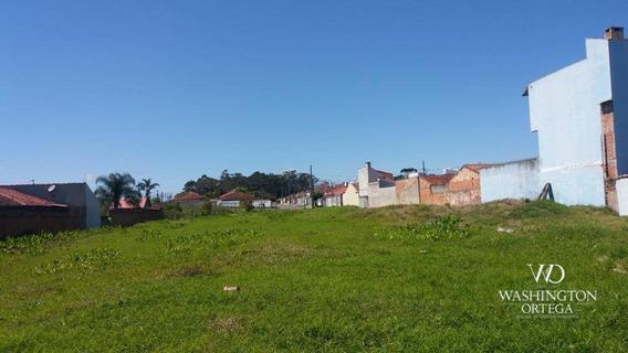 Terreno À Venda, 2952 M² Por R$ 2.300.000,00 - Afonso Pena - São José Dos Pinhais/pr - Te0201
