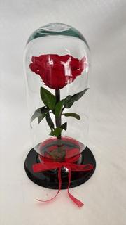 Rosas Eternas De Colombia