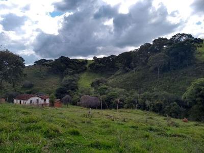 Sitio Em Carvalhos No Sul De Minas Com 24 Ha , Bom De Água, Riacho Dentro Do Terreno. - 3724