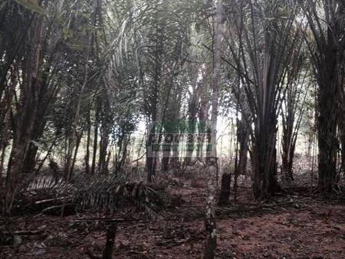 Terreno À Venda, 1000 M² Por R$ 250.000,00 - Zona Rural - Iranduba/am - Te0326