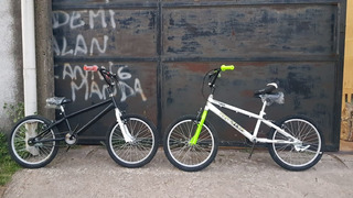 Bicicleta Rodado 20 - Estilo Bmx Freestyle 7800 Efectivo