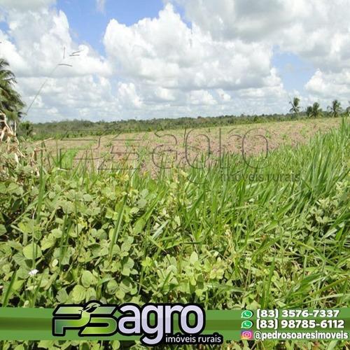 Imagem 1 de 18 de ( Oportunidade )fazenda Na Região De Pedras De Fogo, C/ 80ha - Fa0077